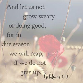 44217b3af0da38074975a7f5b98b2e35--bible-verses-about-patience-bible-activities